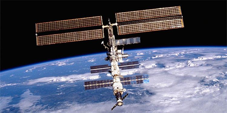Phát hiện ra tế bào không bị ảnh hưởng trong môi trường không gian
