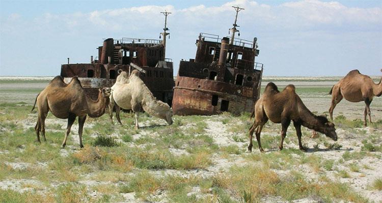 Biển Aral giờ đây chỉ còn là một vùng đất khô cằn.