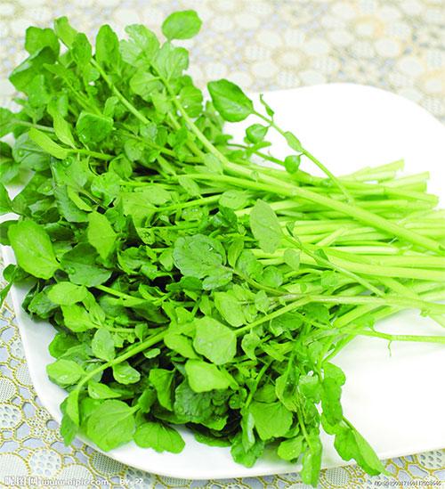 Cải xoong cũng như bất cứ loại rau lá xanh nào đều giàu dinh dưỡng