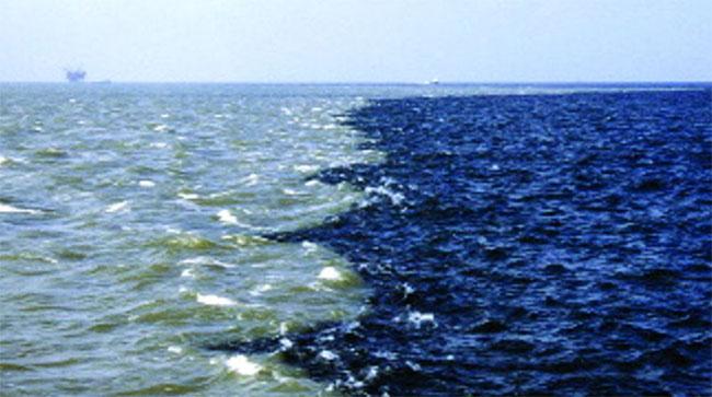 """""""Dead zone"""" - hay vùng chết - là những vùng nước thiếu oxy đến mức không sinh vật nào sống nổi."""