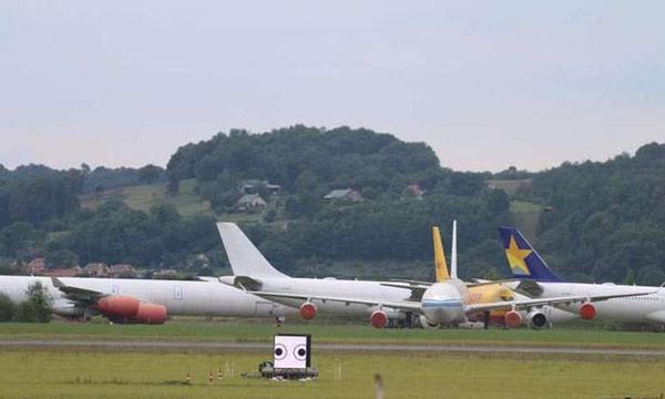 Va chạm giữa máy bay và chim thường dẫn tới những hậu quả thảm khốc