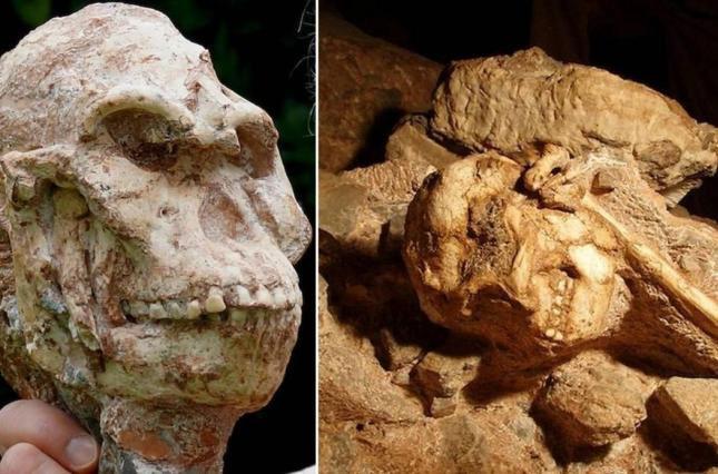 Đây là bộ xương còn lưu lại hoàn chinh nhất của tổ tiên xa xưa nhất của loài người