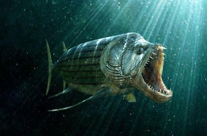 Xiphactinus audax – Thủy quái kỷ Phấn Trắng