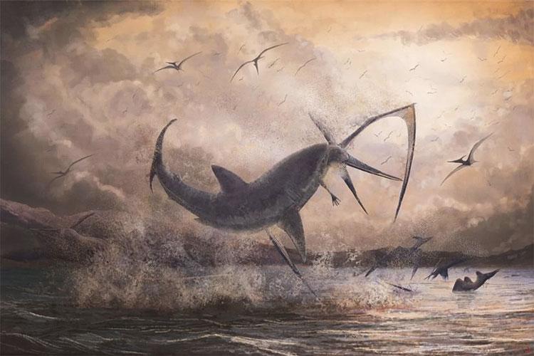 Cá mập ngoạm thằn lằn