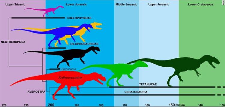 Saltriovenator sống cách đây 200 triệu năm ở đầu kỷ Jura.