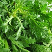 Món ăn vị thuốc từ rau cải cúc