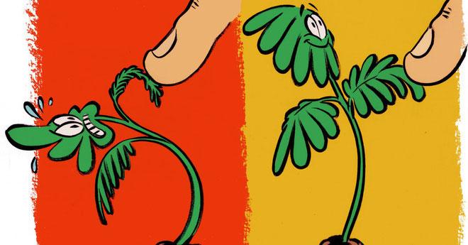 Thực vật chẳng hề thích thú gì với những cái đụng chạm thân mật của con người.