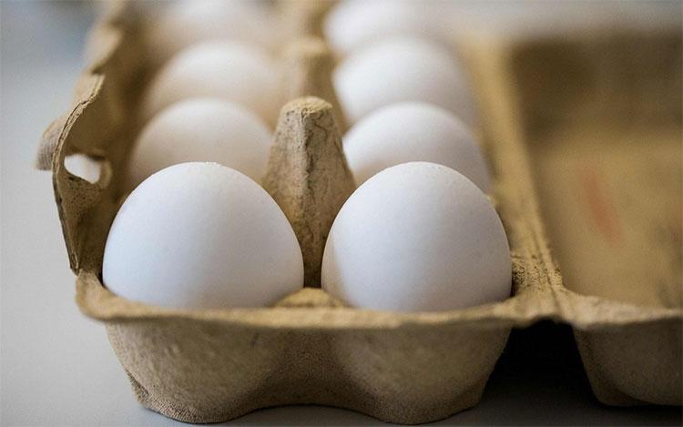 Việc phát hiện giới tính trứng gà có thể làm giảm chi phí trong ngành công nghiệp gia cầm.