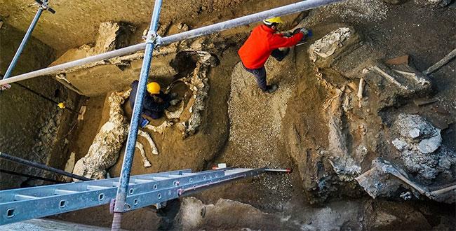 Các chuyên gia khai quật biệt thự cổ ở Pompeii.