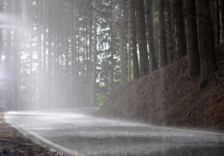 Mùi của đất sẽ biến mất sau trận mưa và mặt đất bắt đầu khô trở lại.