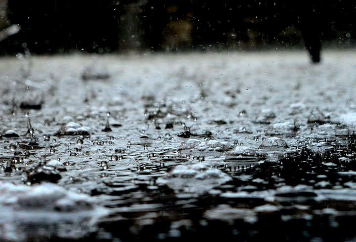 Đừng bất ngờ vì bạn hoàn toàn có thể ngửi thấy mùi của mưa
