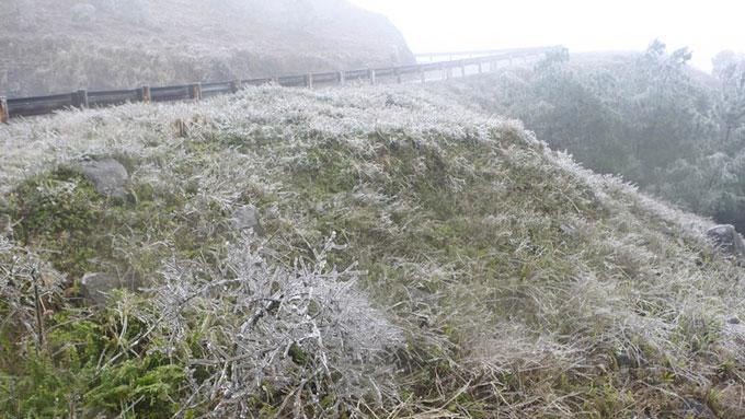 Dọc hai bên đường dẫn lên đỉnh núi, cỏ cây đóng băng dưới thời tiết lạnh giá.
