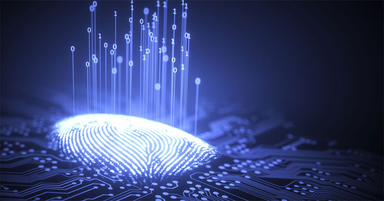 Dấu vân tay nhân tạo có thể được dùng để thâm nhập vào nhiều thiết bị hằng ngày.