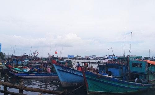 Hơn 2.000 tàu thuyền ở Cà Mau đã vào nơi neo đậu an toàn trong sáng 2/1.