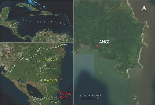 Bản đồ khu vực nơi tìm thấy hài cốt cô gái
