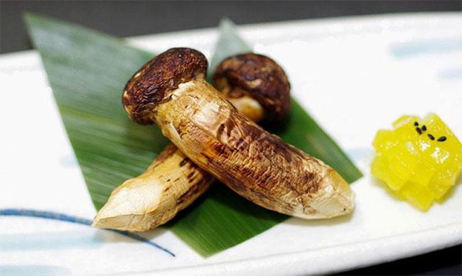 Nấm Matsutake