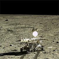 Mặt trăng sẽ có những sinh vật đầu tiên sinh trưởng?