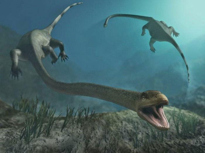 Khủng long Tanystropheus có cổ dài đến 3m.