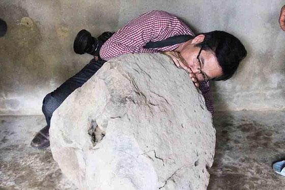 Tù Và nặng 200kg, cao 30cm được phát hiện trên thảo nguyên Bùi Hui.