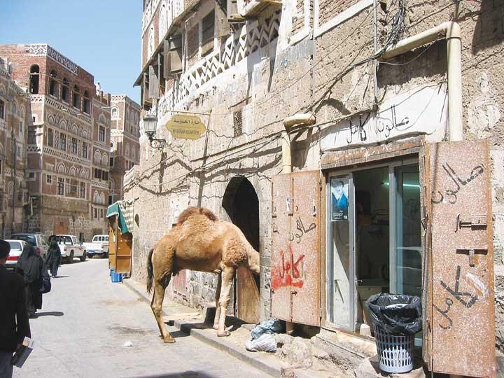 Đời sống trong khu phố cổ Aden.