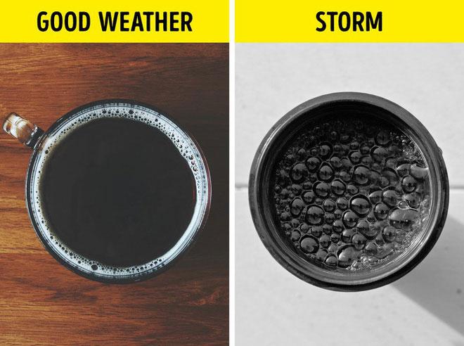 Dự đoán thời tiết chỉ với một cốc nước
