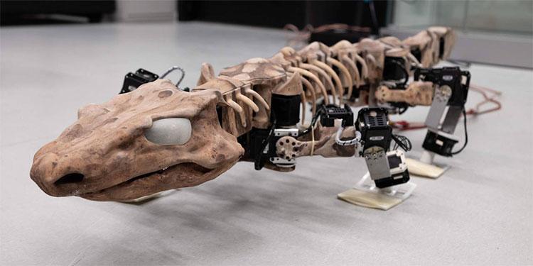 Hoá thạch loài thằn lằn cổ đại được tái sinh dưới dạng robot đặc biệt.