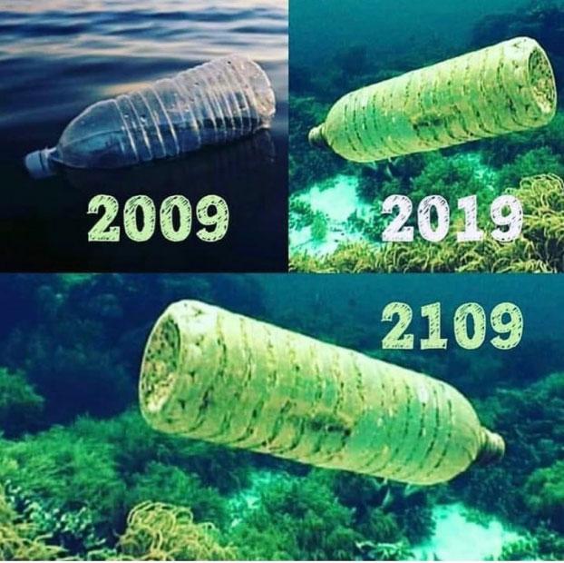 Đó là rác thải nhựa. Phải mất 450 năm để một chiếc chai nhựa phân hủy dưới đại dương