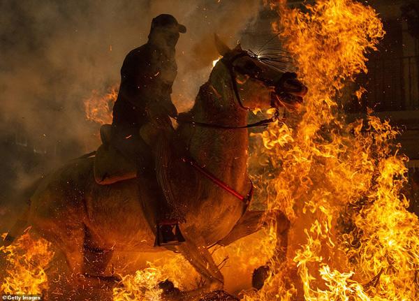 Người dân làng tin rằng lửa và khói sẽ thanh tẩy những chú ngựa