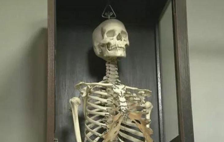 Bộ xương người