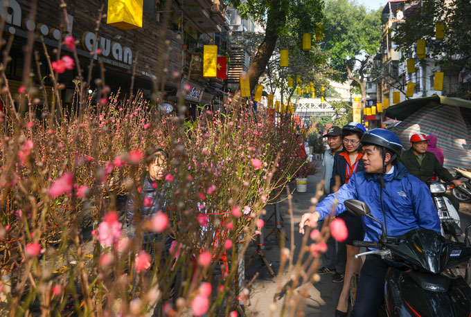 Anh Nguyễn Đình Toàn (Cửa Nam, Hà Nội) đến chợ hoa từ sớm để kết hợp mua sắm đồ Tết và đồ cúng ngày 23 tháng Chạp