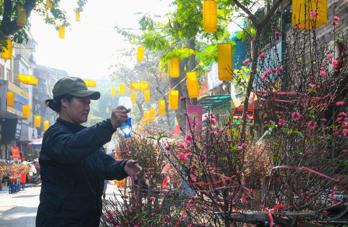 Chị Hòa, một người bán đào tại chợ cho hay, càng những ngày cận Tết chị bán càng đắt hàng