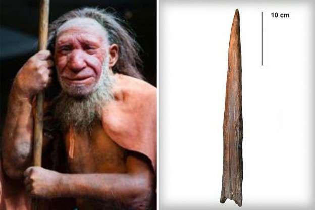 Mặc dù trông khá thô sơ nhưng vũ khí này được người Neanderthal sử dụng vô cùng hiệu quả.