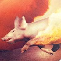 Quái chiêu biến lợn thành vũ khí hủy diệt cực hiểm thời xưa