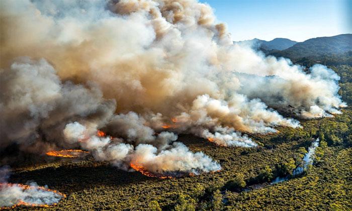 Nhiều đám cháy rừng đã xảy ra ở Tasmania