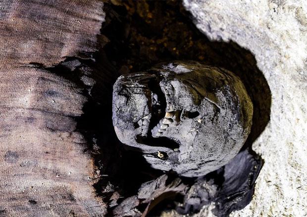 Một trong những xác ướp có phần đầu chỉ được quấn vải lanh 1 phần, để lộ hàm răng.