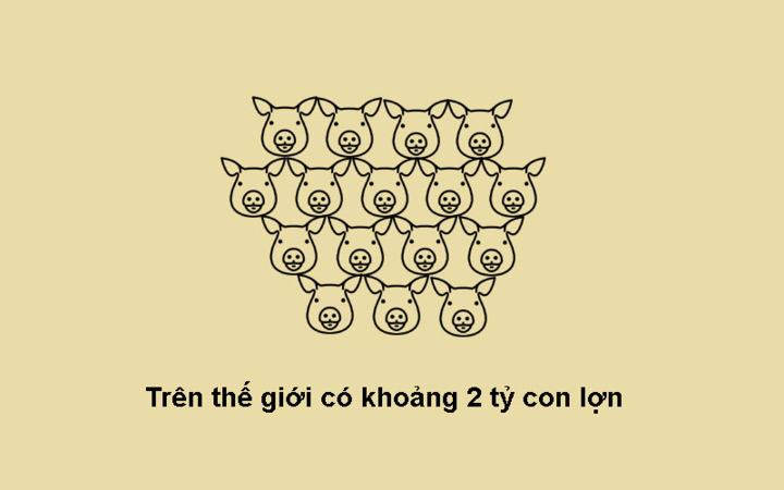 Có 2 tỷ con lợn trên trái đất