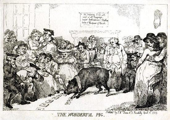 """Bức vẽ mô tả buổi biểu diễn của """"Wonder Pig"""" – chú lợn thông minh đầu tiên được biết đến"""