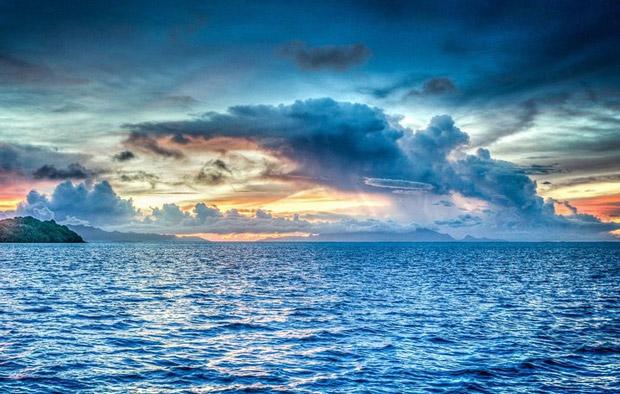 Hiện tượng nóng lên của Trái Đất sẽ làm thay đổi sự phân bố của các loài thực vật phù du trên đại dương