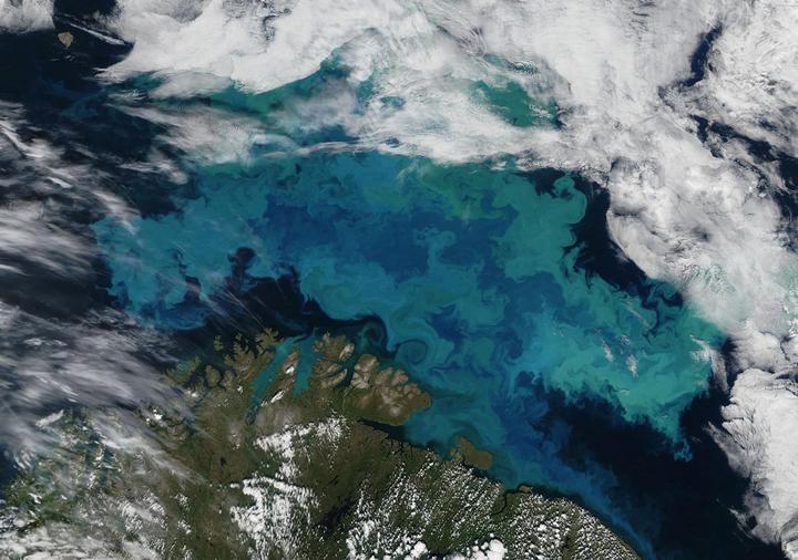 Màu sắc của đại dương thường chỉ được xác định khi ánh sáng Mặt Trời tương tác với nước biển