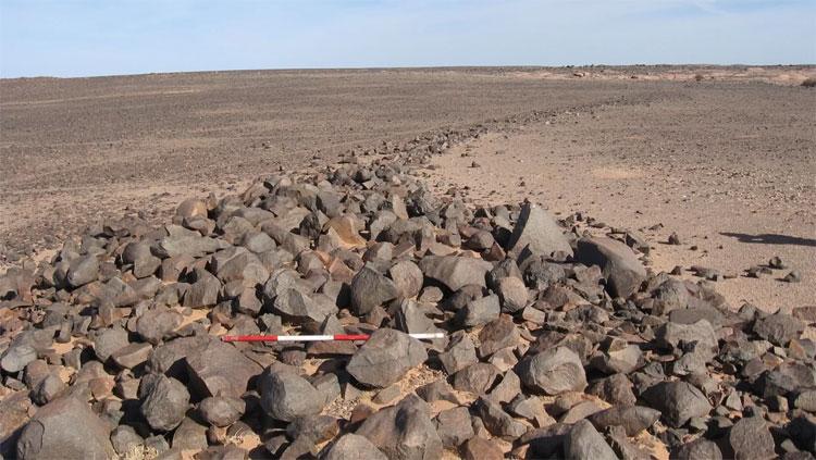 Khu vực bãi đá cổ ở Tây Sahara.