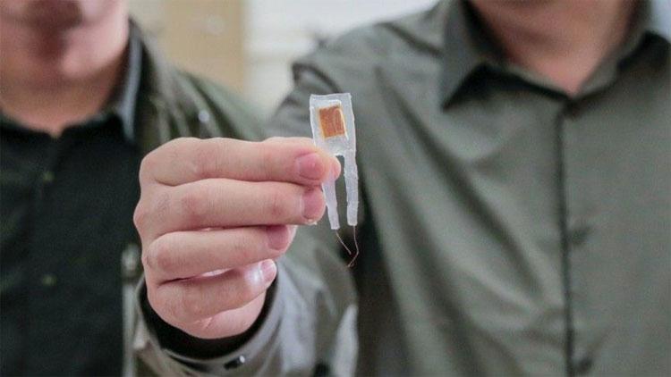 Con chip giúp kiểm soát cân nặng với kích thước nhỏ gọn.
