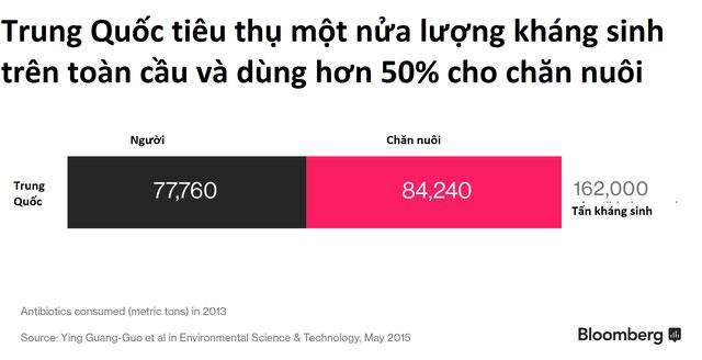 Trung Quốc là nước tiêu thụ khoảng 50% sản lượng thịt heo trên toàn cầu