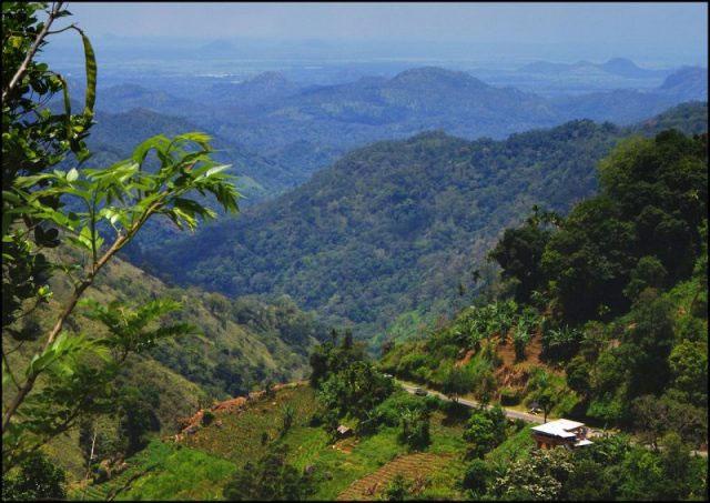 Địa hình điển hình của vương quốc Kandy với núi cao trập trùng và rừng rậm phủ kín.