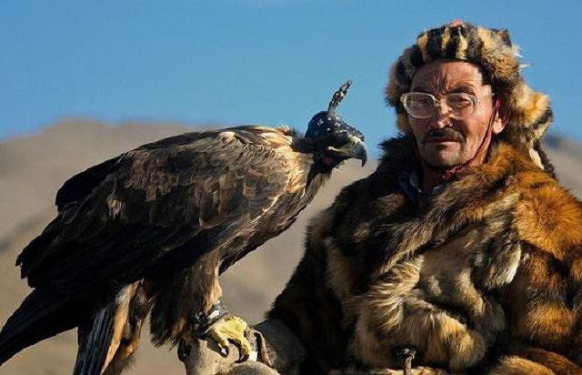 Đại bàng thảo nguyên giống với đại bàng hung dữ (Aquila rapax).