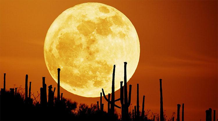 Siêu trăng