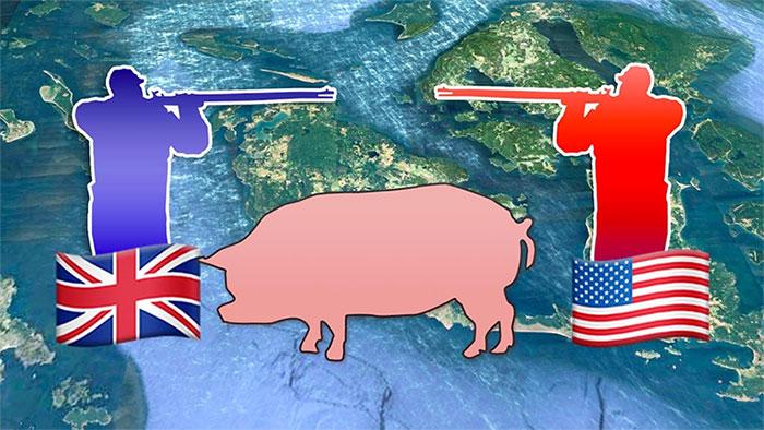 Vì một con lợn mà 2 cường quốc suýt thì chiến tranh.