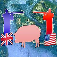 """Câu chuyện về """"Pig War"""": Con lợn dẫn đếnnguy cơ gây đại chiến giữa 2 cường quốc"""
