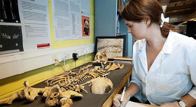 Một bộ hài cốt cổ được đem về phòng thí nghiệm để nghiên cứu