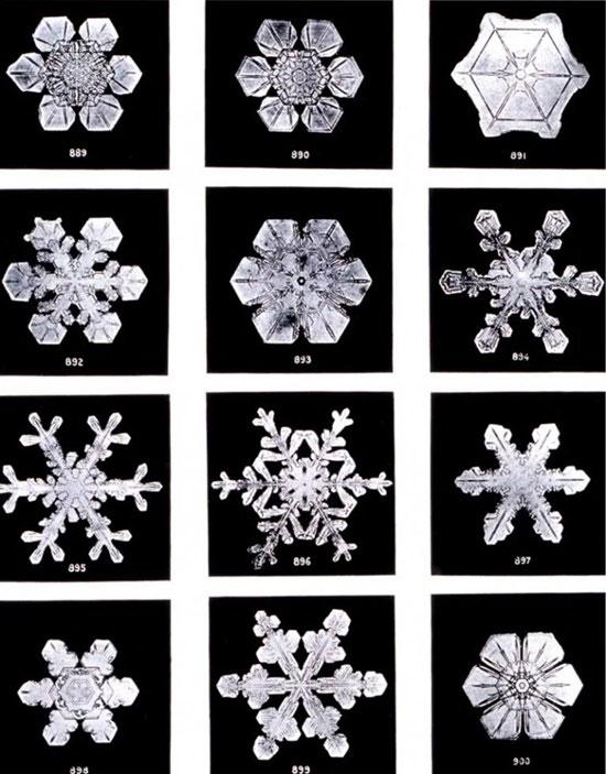 Các hình dạng của bông tuyết.