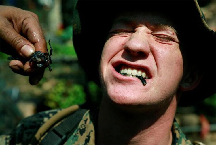 Quân nhân Mỹ phải nhai bọ cạp sống.